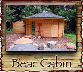 Bear Cabin Stormking Spa Mt. Rainier