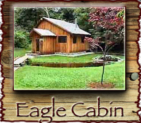 Eagle Cabin Stormking Spa Mt. Rainier