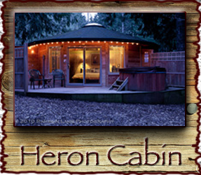 Heron Cabin Stormking Spa Mt Rainier