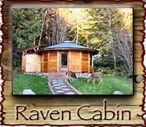 Raven Cabin Stormking Spa Mt. Rainier
