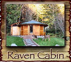 Stormking Spa And Mt Rainier Rental Cabins At Mount Rainier