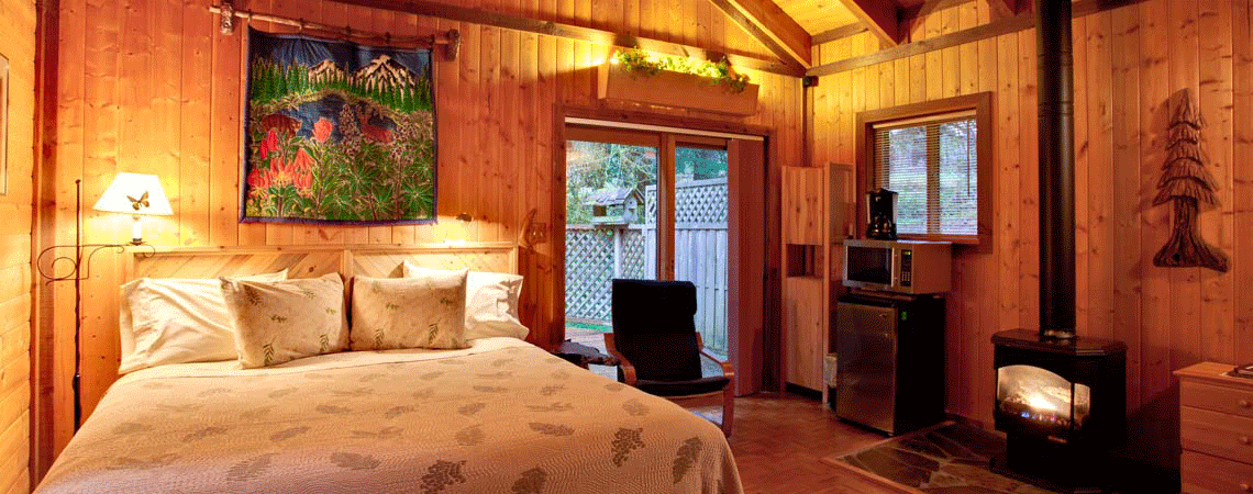 Private Cabin at Stormking Spa Retreat Mt Rainier